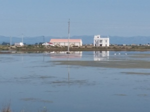 Ebro Delta